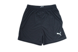 DISCOUNTED TEAM SHORTS (2019-2020)