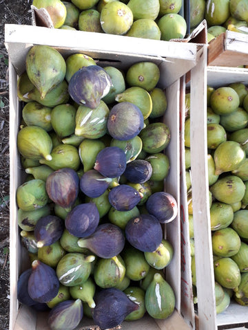 Boxes-of-organic-figs