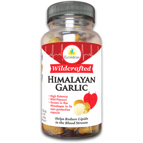 Wild Crafted Himalayan Garlic