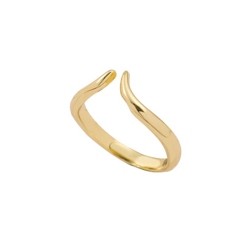 Open Curve Ring