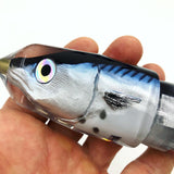 "KC Lures 12"" Kawakawa (Tuna) Fish Head Bullet"
