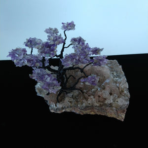 Tree of Life Amethyst no.157