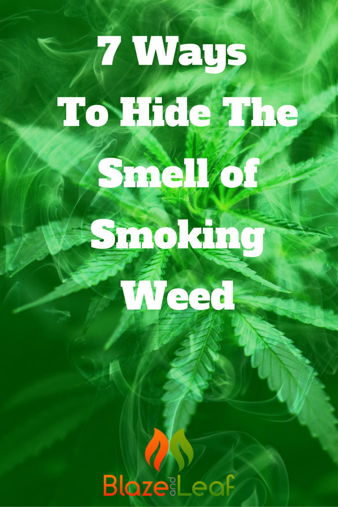 7 Ways To Hide The Smell Of Smoking Weed Blaze And Leaf
