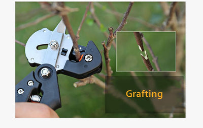 Professional Grafting Tool‎