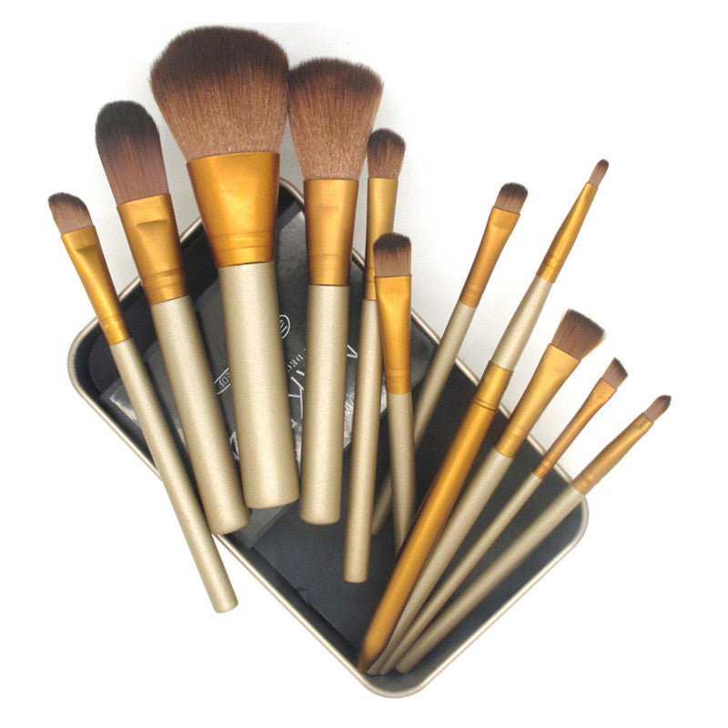 12 pcs Brush Set