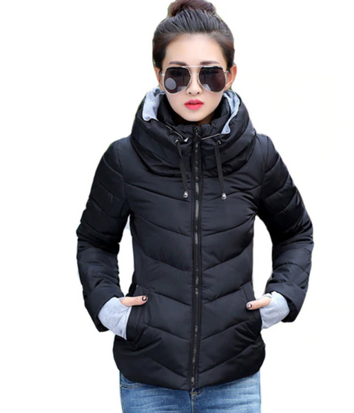 Short Padded Winter Jacket