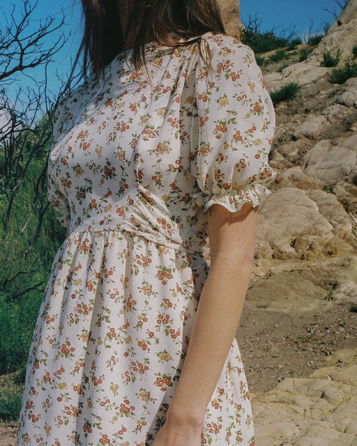 Celeste Dress in Desert Floral
