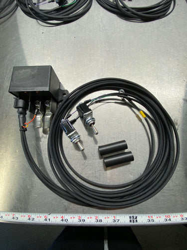 Basic Remote Kill Switch