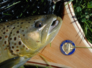 Brown trout laying on custom landing net handle with medallion inset.