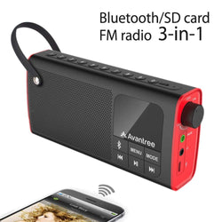 Portable Bluetooth Speaker FM Radio, SD Card