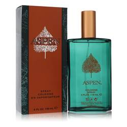 Aspen Cologne for Men | Coty