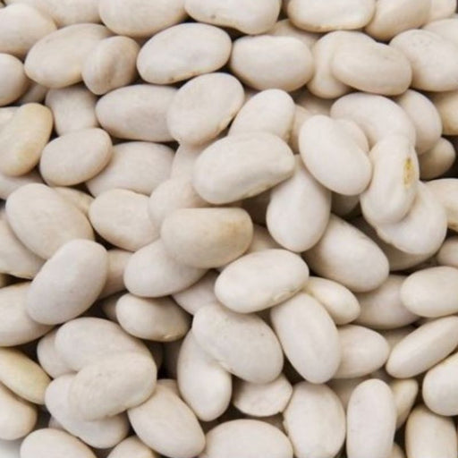 Cannellini White Kidney Beans Dried Certified Organic 500g