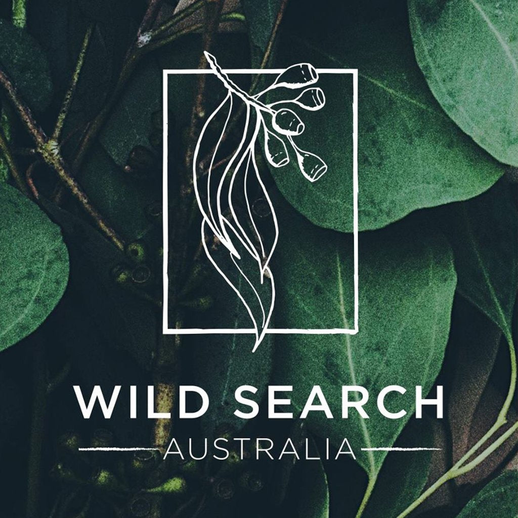 Trader Tribe ~ Wild Search