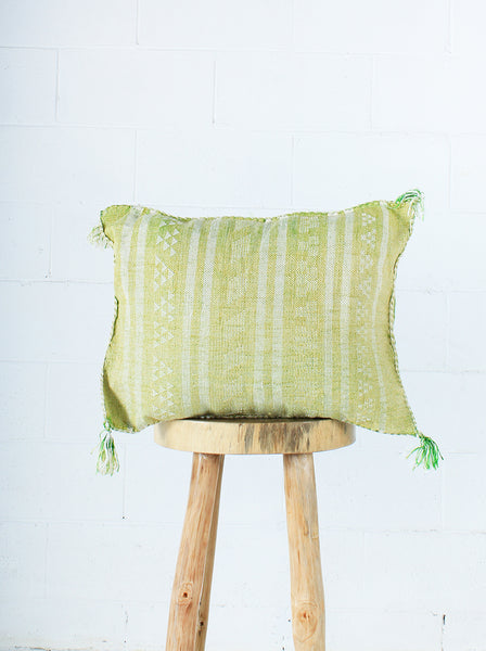 Cactus silk Geo Stripe Cushion - Single