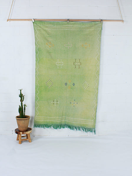 Lime Green Cactus Silk Throw
