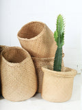 Seagrass Baskets No Handles