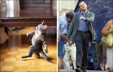 DiCaprio without a car -MissMeowni.com