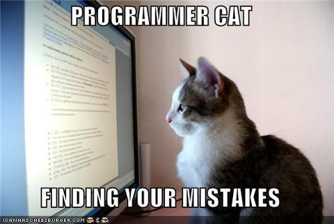 Programmers need a perfect pet and we know the best one – MissMeowni