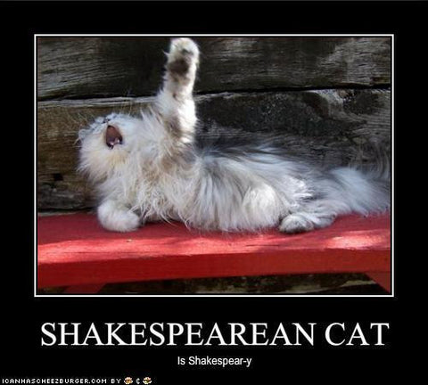 Shakspearean Cat drama -MissMeowni.com