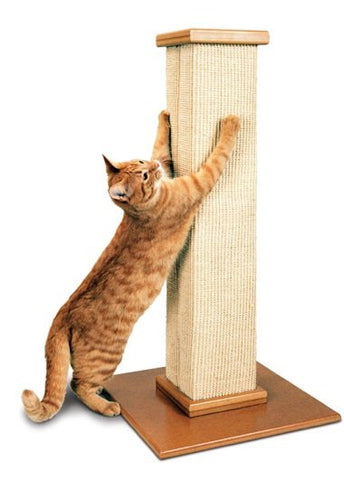 cat with scratching post -MissMeowni.com