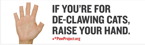 don't declaw cats -MissMeowni.com