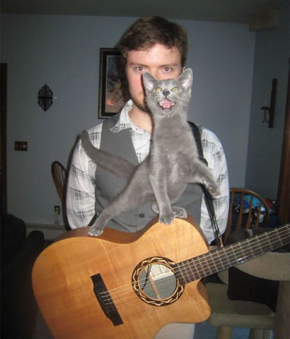 cat plays guitar -MissMeowni.com