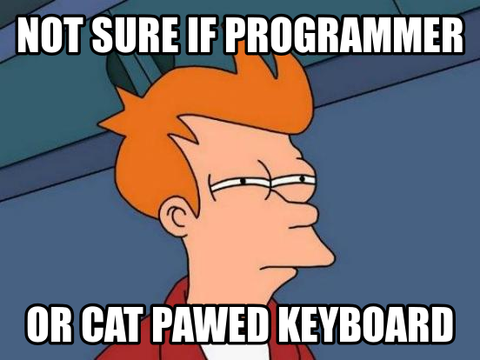 programmers need a perfect pet and we know the best one missmeowni