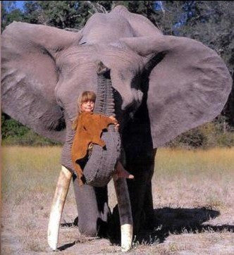 wild girl with elephant -MissMeowni.com