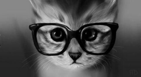 cute kitten glasses -MissMeowni.com