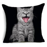 MissMeowni Home Decor OneSize / Black Blackish Kitten Cushion Cover