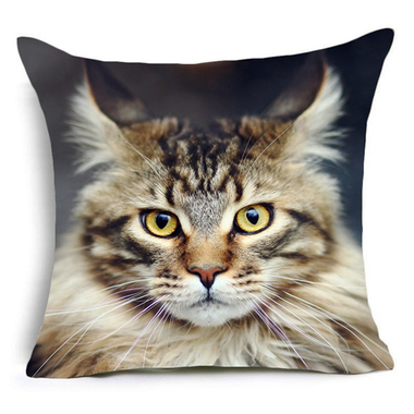 Not in a Mood Today Cushion Cover-Home Decor-MissMeowni