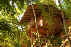Polwaththa Eco Lodges, Kandy