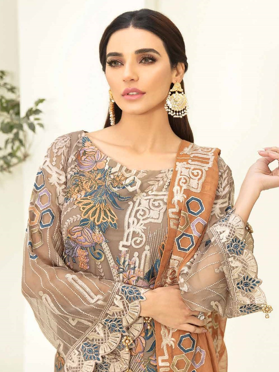 Embroidery on Chiffon & Silk