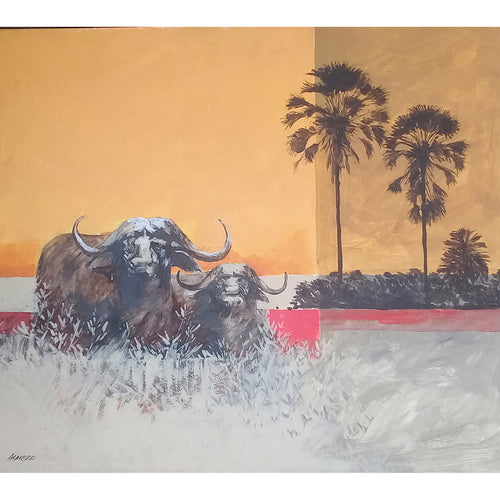 The Buffalo by Almero Oosthuizen