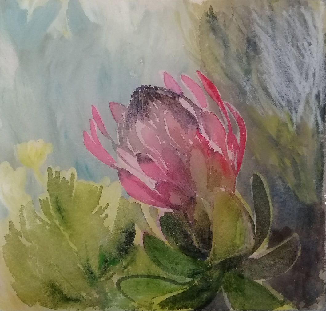 Protea study on Glass by Jenny Parsons