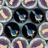 The Blue Jay Way Brooch