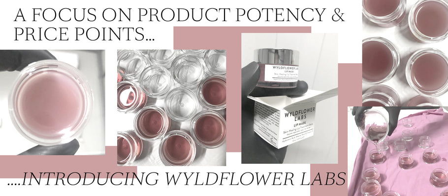A Focus On Product Potency & Price Points - Introducing Wyldflower Labs