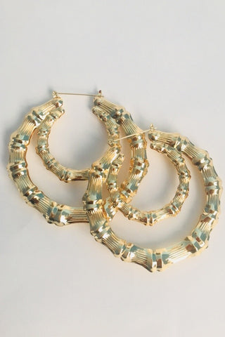 KRISTY LANI Double Hooped Earrings