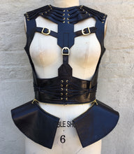 LEATHER HARNESS
