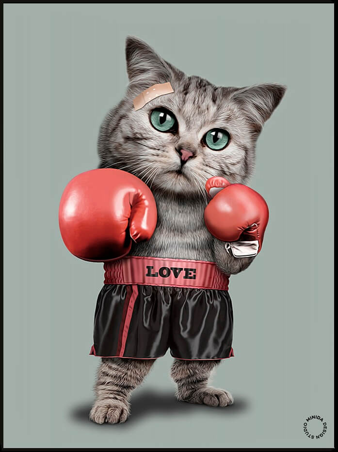 Plakat - Boxing Cat - Minida