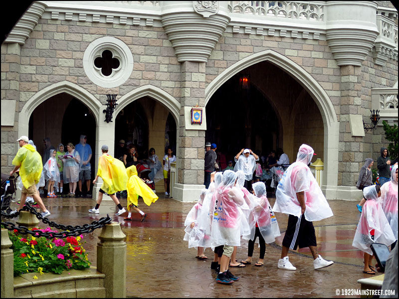Ponchos in the rain at the Walt Disney World Magic Kingdom