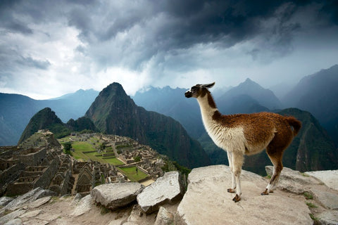 Discover Machu Picchu on our Inca Bootcamp