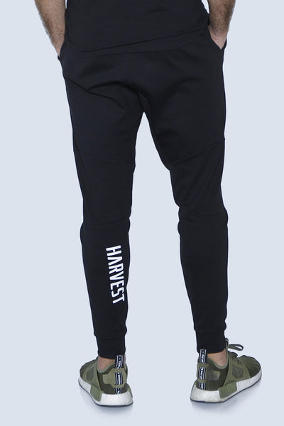 """The Harvest"" Joggers Back"
