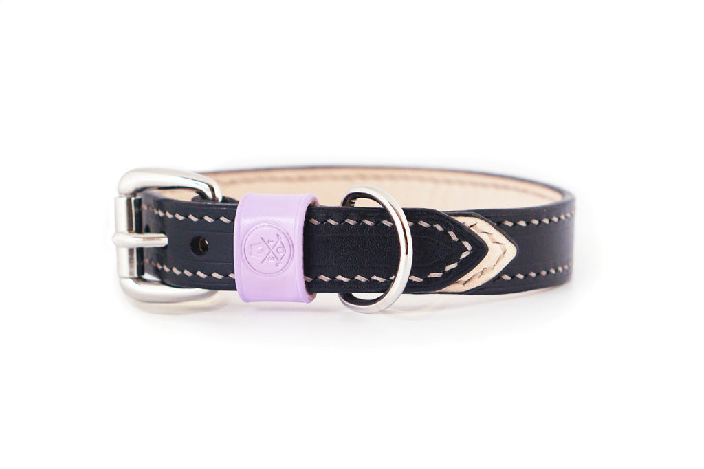 Bearytail Signature Leather Collar || Black & Lilac