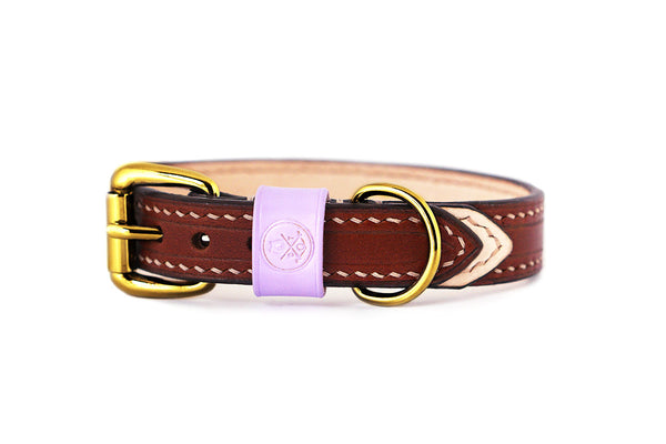 Bearytail Signature Leather Collar || Brown & Lilac