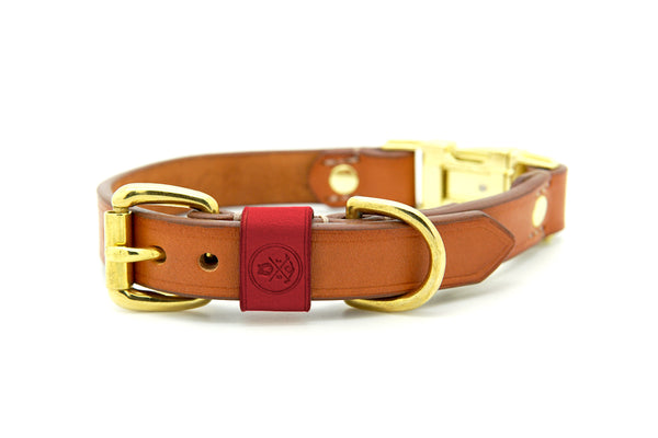 Whisky Collection || Dual Buckle Collar Scarlett