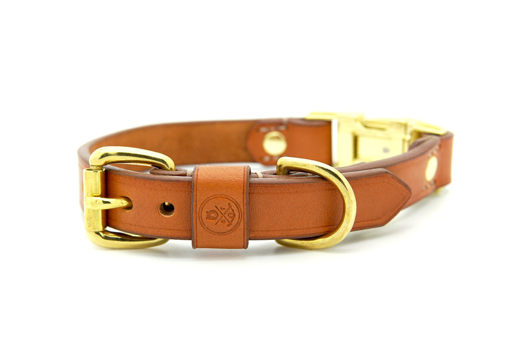 Whisky Collection || Dual Buckle Collar