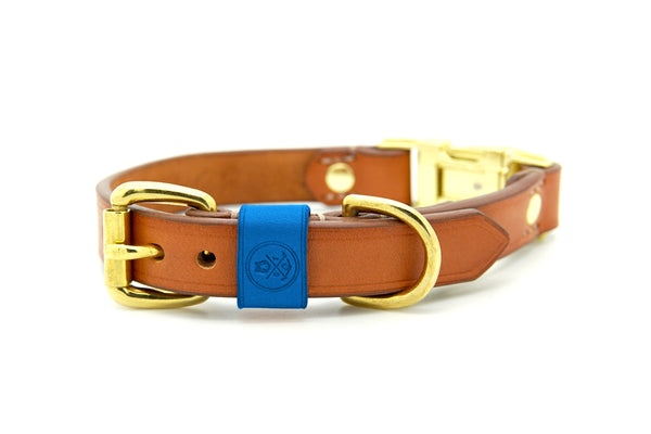 Whisky Collection || Dual Buckle Collar Azure