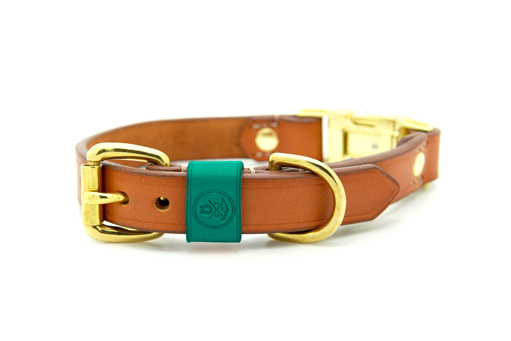 Whisky Collection || Dual Buckle Collar Jade