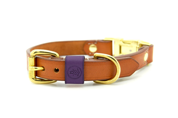 Whisky Collection || Dual Buckle Collar Mauve